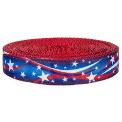 1 Inch Star Spangled on Red Nylon Webbing