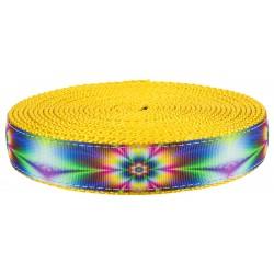 1 Inch Tie Dye Flowers on Gold Nylon Webbing