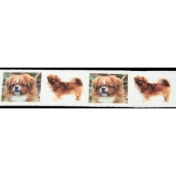 Tibetan Spaniel Cotton Ribbon - Various Lengths