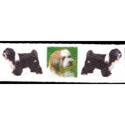 Tibetan Terrier Cotton Ribbon - Various Lengths & Widths