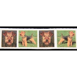 Welsh Terriers Cotton Ribbon - Various Lengths & Widths
