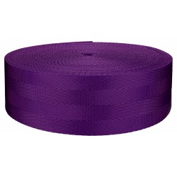2 Inch 4 Panel Purple Light Weight Nylon Webbing Closeout