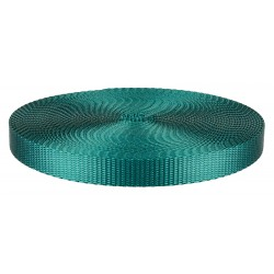 1/2 Inch Teal Heavy Plus Nylon Webbing Closeout