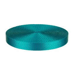 3/4 Inch Teal Heavy Plus Nylon Webbing Closeout