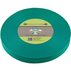 1 Inch Turquoise Polypro Webbing