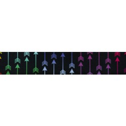 3/4 Inch Colorful Arrows Polyester Webbing