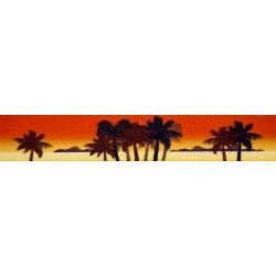 1 Inch Caribbean Sunset Polyester Webbing