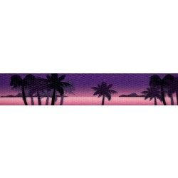 1 Inch Caribbean Twilight Polyester Webbing