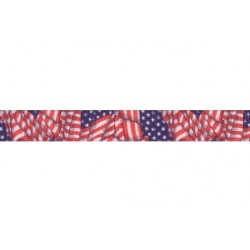 1 Inch Patriotic Tribute Polyester Webbing