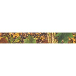 1 Inch Southern Forest Camo Polyester Webbing
