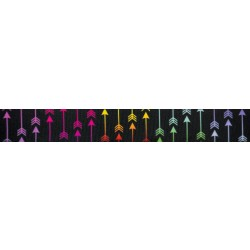1 Inch Colorful Arrows Photo Quality Polyester