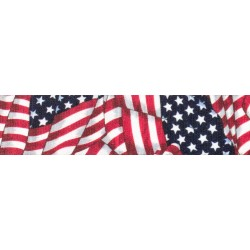 1 Inch Patriotic Tribute Photo Quality Polyester