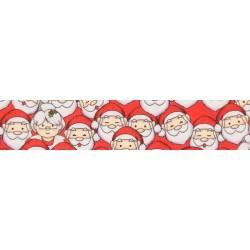 1/2 Inch Where's Merry Photo Quality Polyester