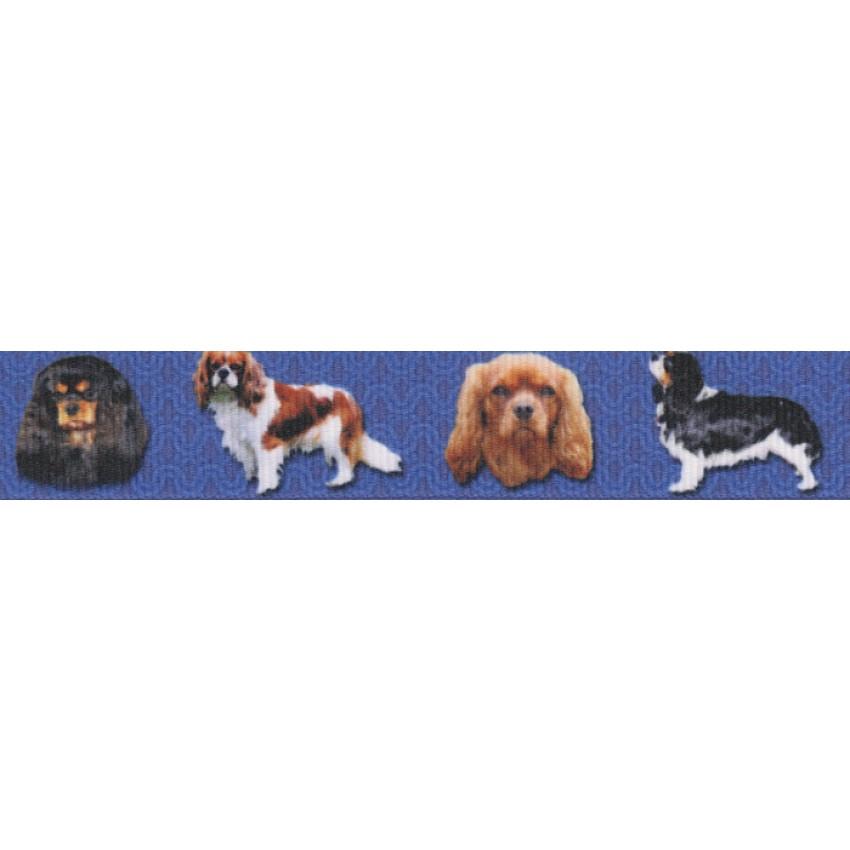 Country Brook Design® 7//8 Inch Rottweiler Grosgrain Ribbon