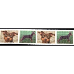 Chocolate Miniature Pinscher Cotton Ribbon - Various Lengths