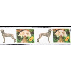 1 Inch Weimaraner Cotton Ribbon - Various Lengths