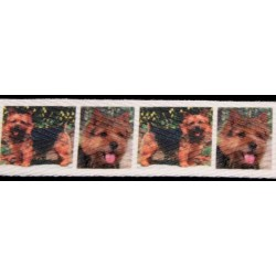 Norwich Terrier Cotton Ribbon - Various Lengths & Widths