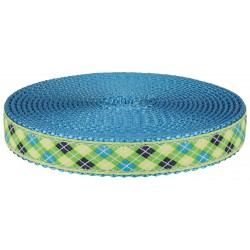 3/4 Inch Lime Green and Blue Argyle Ribbon on Ice Blue Nylon Webbing Closeout
