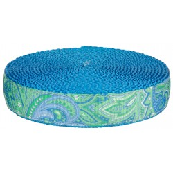 1 Inch Green Paisley on Ice Blue Nylon Webbing