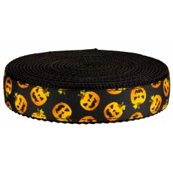 1 Inch Happy Jack on Black Nylon Webbing
