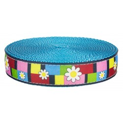 3/4 Inch Spring Daisies on Ice Blue Nylon Webbing