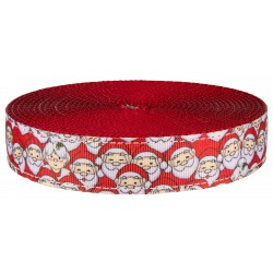 1 Inch Where's Merry on Red Nylon Webbing