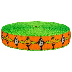 1 Inch When Pumpkins Fly on Hot Lime Green Nylon Webbing