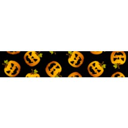 1 Inch Happy Jack Photo Quality Polyester