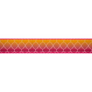 1 Inch Fabulous Ombre on Hot Pink Nylon Webbing Closeout