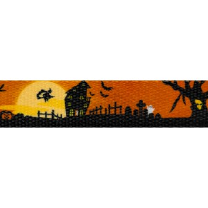 1 Inch All Hallow's Eve Polyester Webbing
