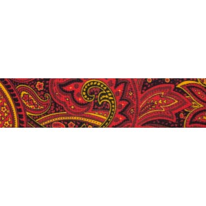 1 Inch Fire Paisley Polyester Webbing