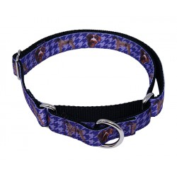 German Wirehaired Pointer Ribbon Martingale Dog Collar