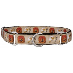 Chow Chow Ribbon Martingale Dog Collar