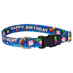 Deluxe Blue Happy Birthday Featherweight Dog Collar - Extra Small