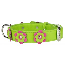 Collar Glamour with Flowers Leather Collar
