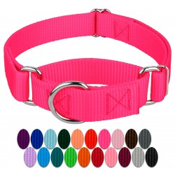 Martingale Heavyduty Nylon Dog Collar