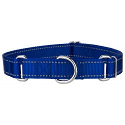 Royal Blue Reflective Nylon Martingale Dog Collar