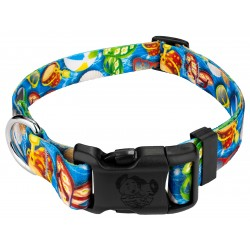 Deluxe Pool Party Dog Collar