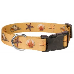 Deluxe Seashells Dog Collar