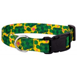 Deluxe Turtles Dog Collar