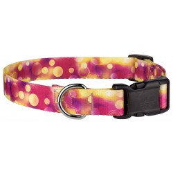 Deluxe Unfocused Affection Dog Collar