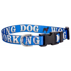 Deluxe Working Dog Industrial Featherweight Dog Collar - Extra Small