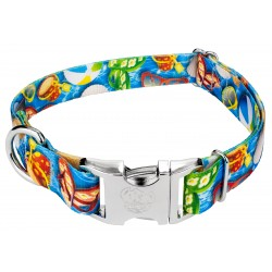 Premium Pool Party Dog Collar