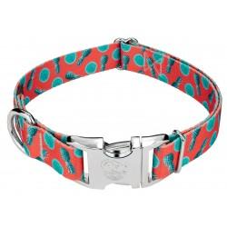 Premium Tropical Tango Dog Collar