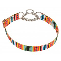 Summer Pines Half Check Dog Collar