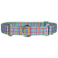 Cool Blue Plaid Martingale Dog Collar