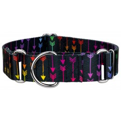 1 1/2 Inch Colorful Arrows Martingale Dog Collar