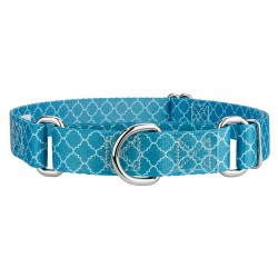 Classy Chic Martingale Dog Collar