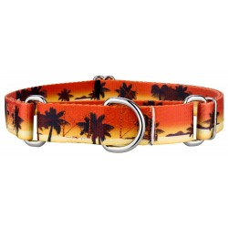 Caribbean Sunset Martingale Dog Collar