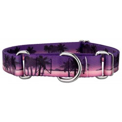 Caribbean Twilight Martingale Dog Collar